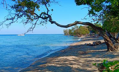 Moyo Island 9 by Francis